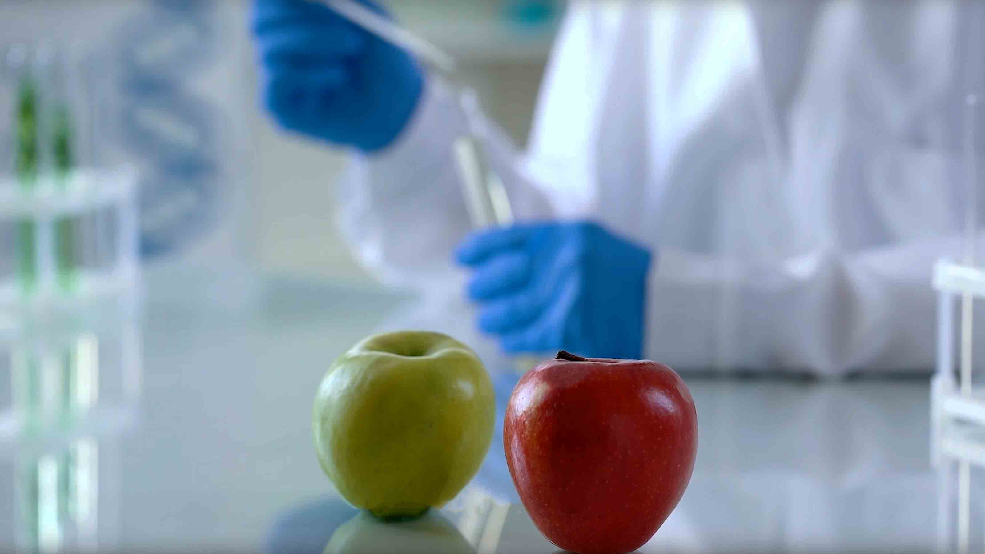 Apples in the laboratory