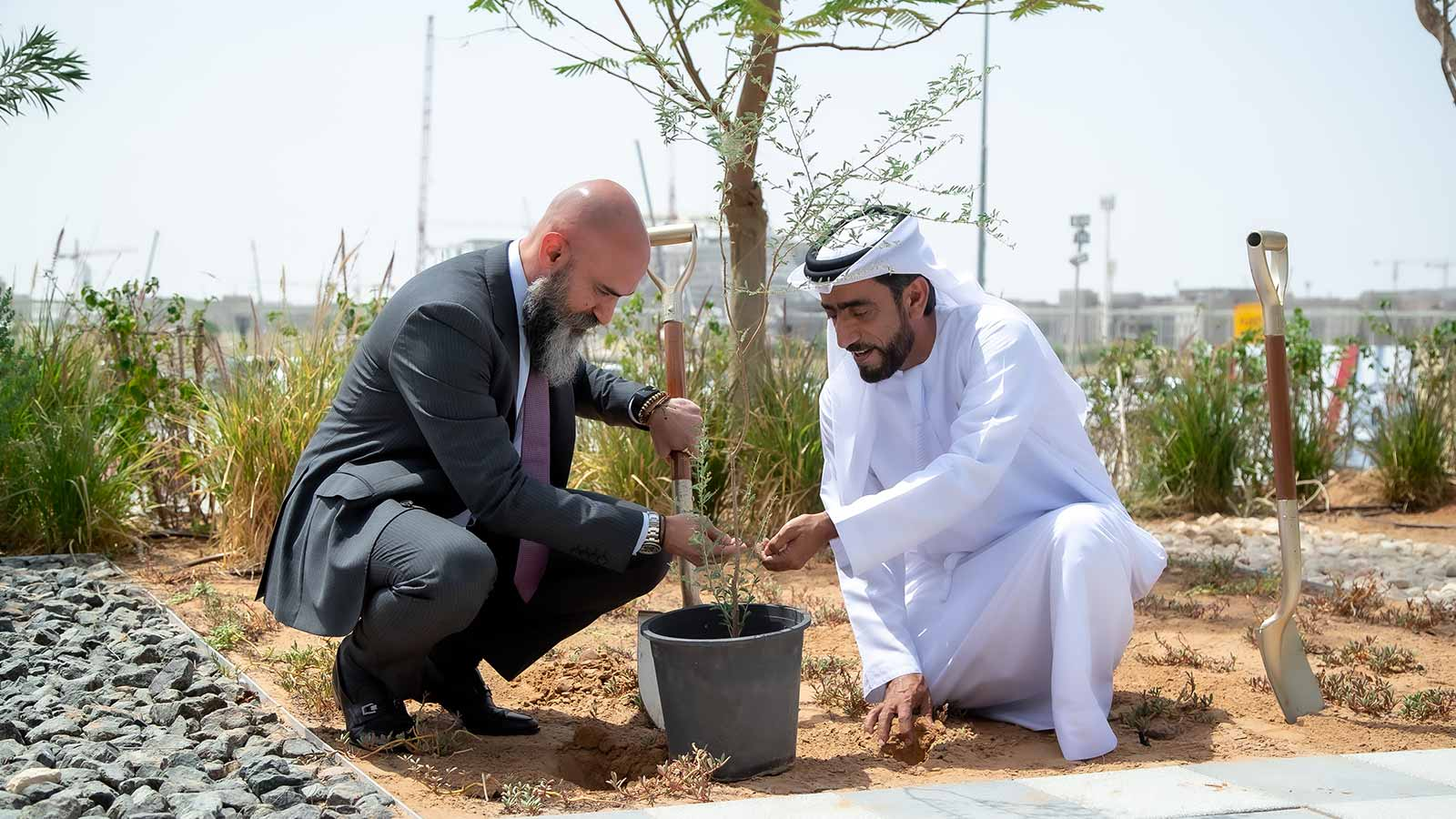 Cisco tree planting