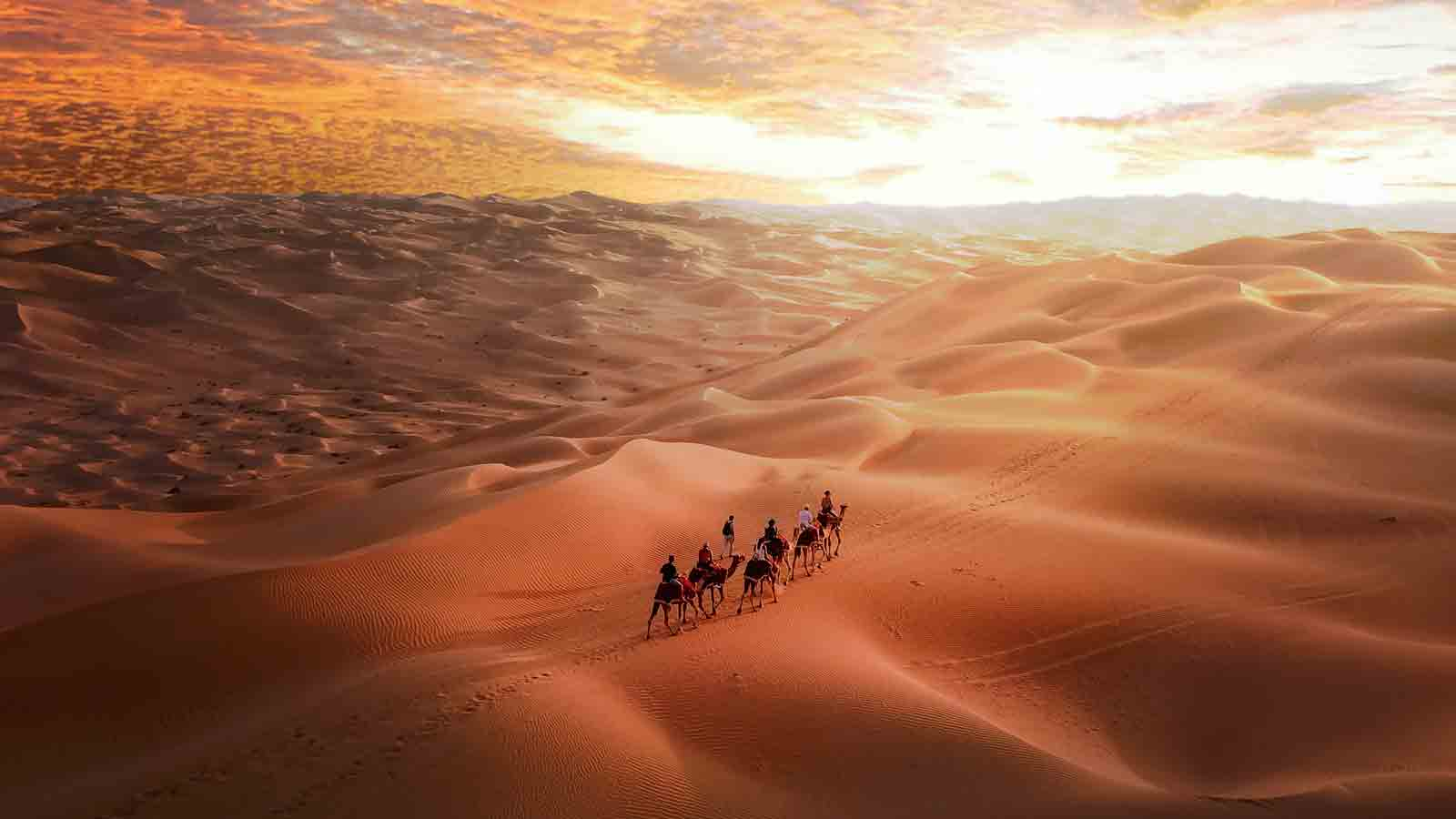 Trekking the sand dunes with camels